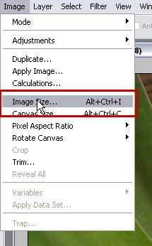 tut-4-7_imagesize.jpg